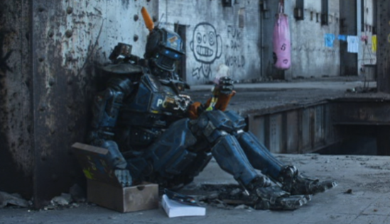 Chappie Book Box 1