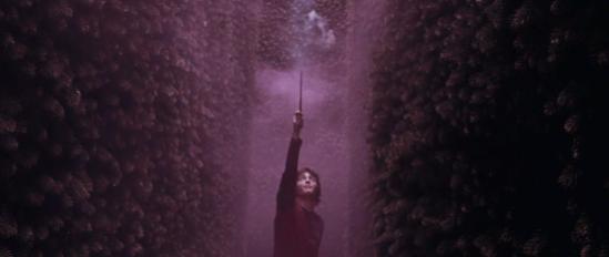 potter-wand-8