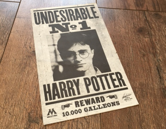 Harry Potter Flyer 1